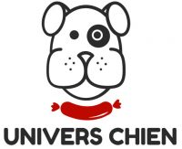 Univers chiens